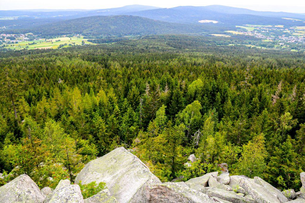 Fichtelgebirge Felsen und Wald