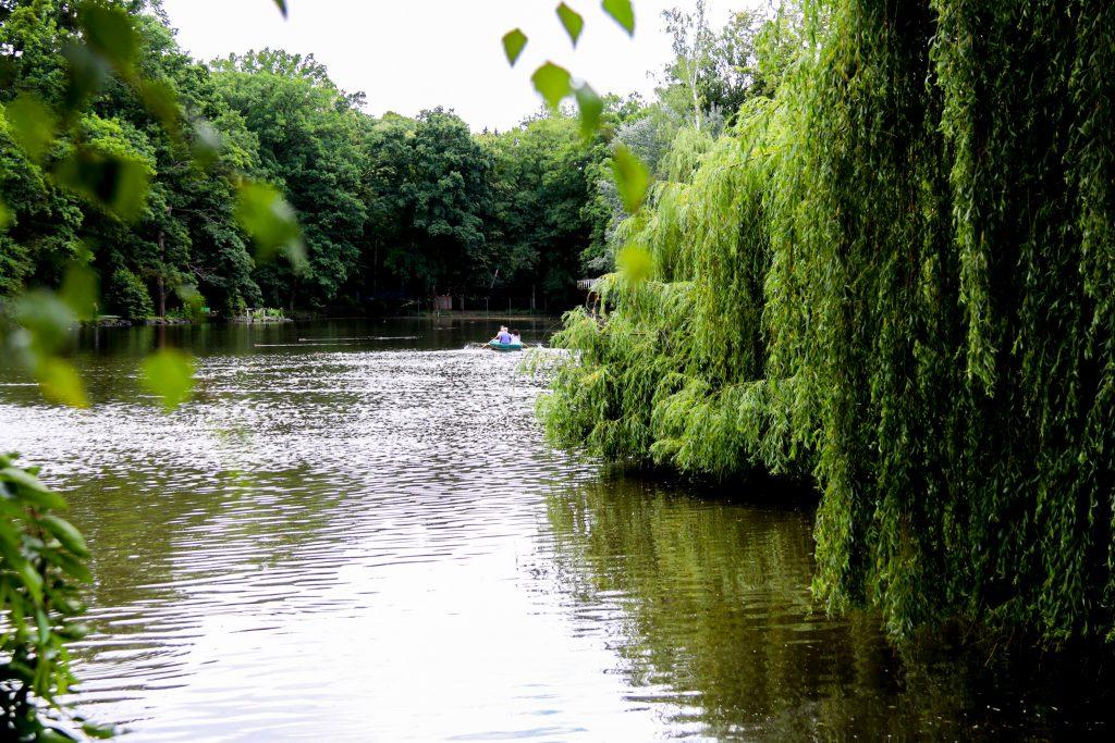 Röhrsee in Bayreuth