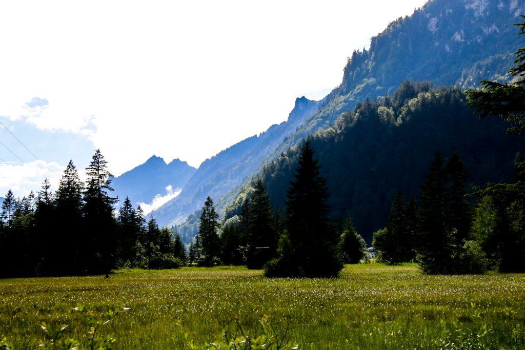 Blumenwiese in Oberammergau mit Bergpanorama und Wolken