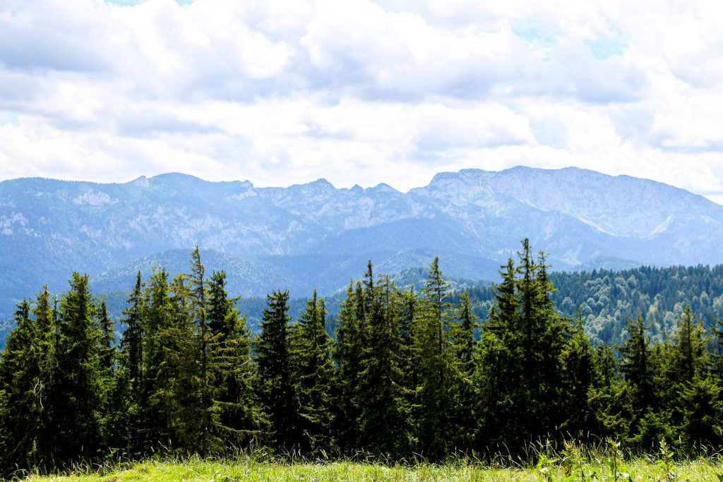 Wiese, Wald und Bergpanorama vom Kloster Reutberg aus